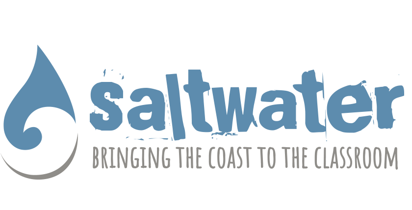 Home Saltwater Creations